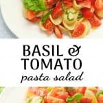 Tomato pasta salad with fresh basil on a white plate.