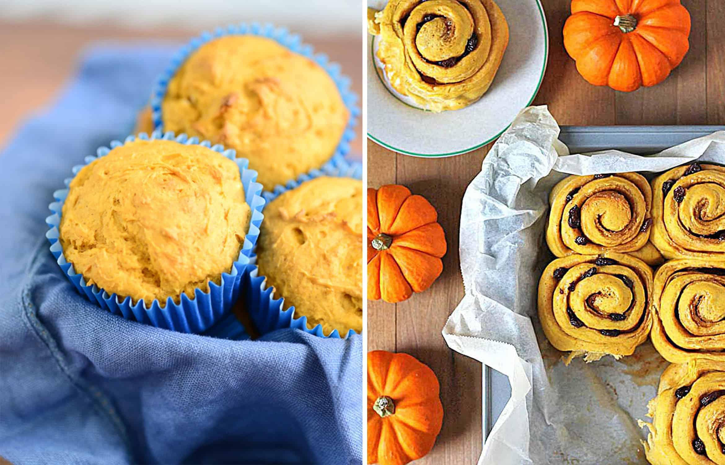 Three PUMPKIN MUFFINS on a blue tea towel - Delicious Every Day and VEGAN PUMPKIN CINNAMON ROLLS in a tray - Delightful Adventures