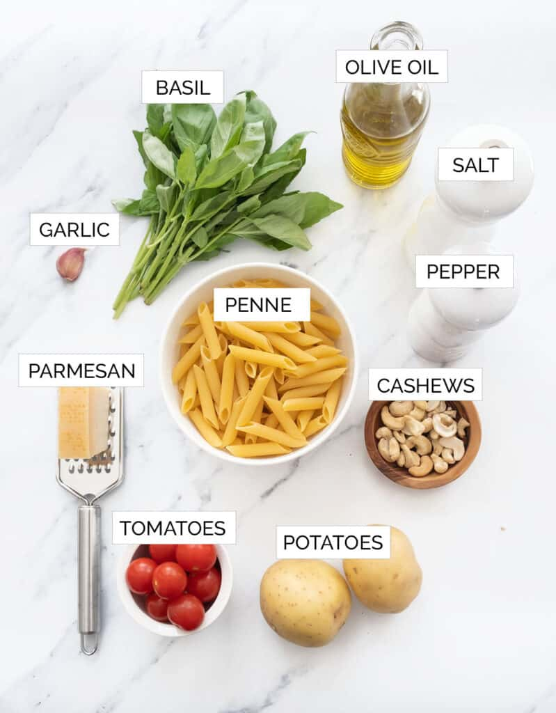 The ingredients to make penne with pesto are arranged over a white background.