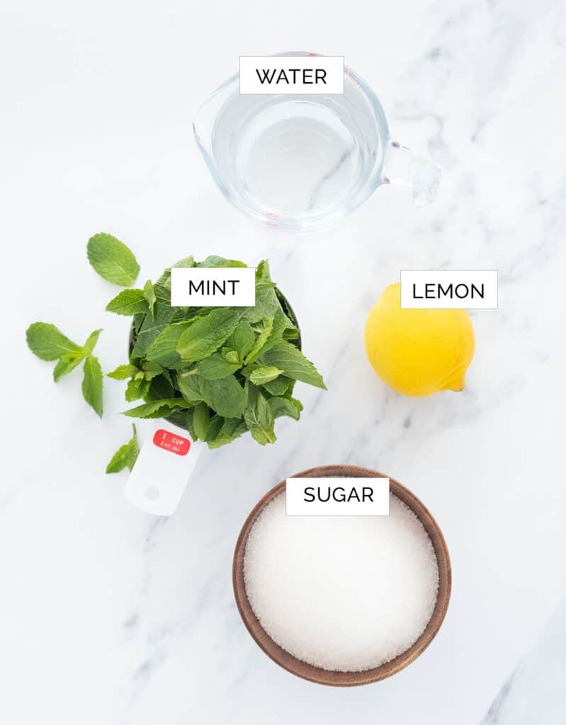 The ingredients to make this mint syrup recipe are arranged over a white background.