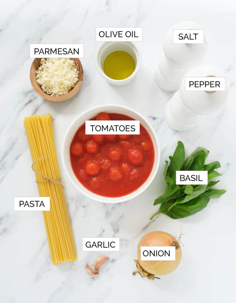 The ingredients to make pasta napoletana are arranged over a white background.